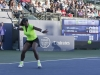 120714serena-about-to-hit-a-forehand
