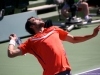 cilic1