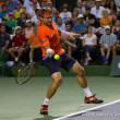 David Ferrer Wins Malaysian Open, Huey and Kontinen Take Doubles Title