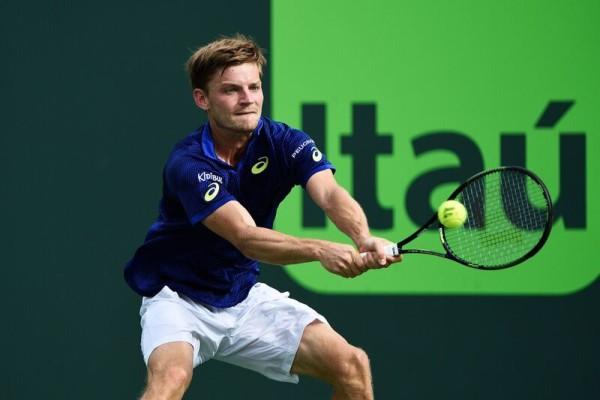 David Goffin - Tennis Panorama